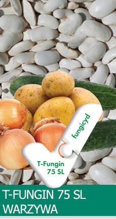 tfungi-warzywa
